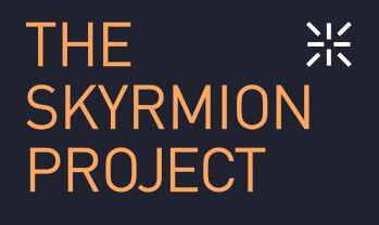 201608_THE_SKYRMION_PROJECT_LOGO