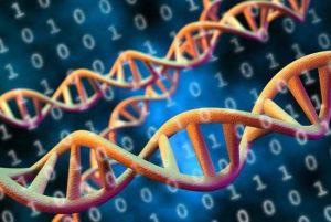 Los Alamos Labs Translation Software Enables Efficient Dna Data Storage
